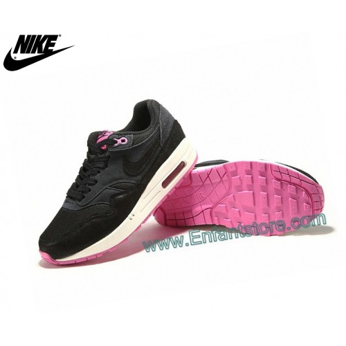 Nike Femme Sneakers Wmns Air Max 1 Paint Imperial Purple 528898-500